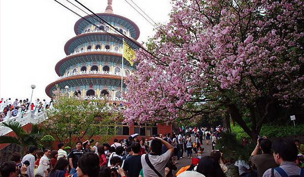 Kết quả hình ảnh cho hình ảnh Đài Loan