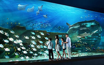 thuy-cung-sea-aquarium-singapore