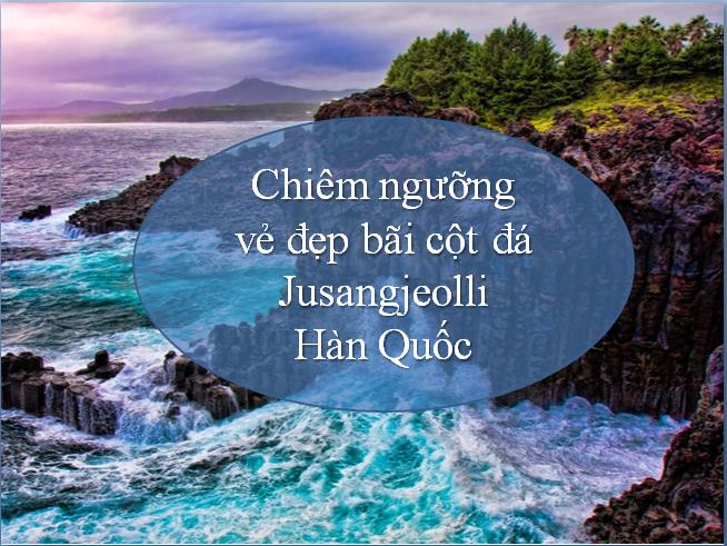 bai-cot-da-jusangjeolli-han-quoc