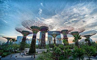 garden-bay-the-bay-tour-singapore-tu-ha-noi