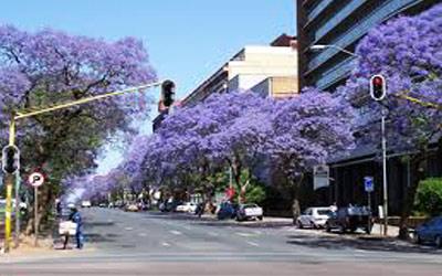 du-lich-nam-phi-mua-sam-tai-Johannesburg