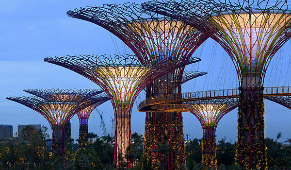 tua-di-singapore-dip-he-garden-by-the-bay