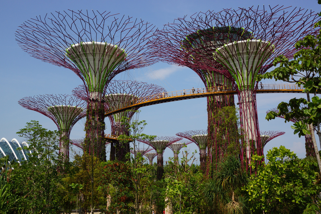 tour-du-lich-singapore-the-garden-by-the-bay