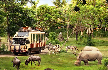 taman-safari-indonesia