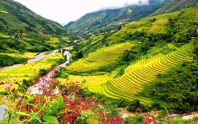 tour-du-lich-sapa-gia-re