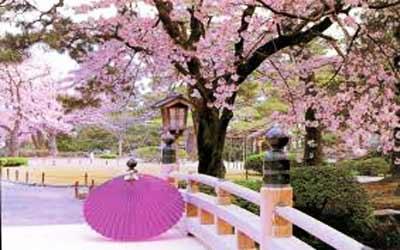 du-lich-nhat-ban-ha-noi-osaka-kyoto-kawaguchi-tokyo
