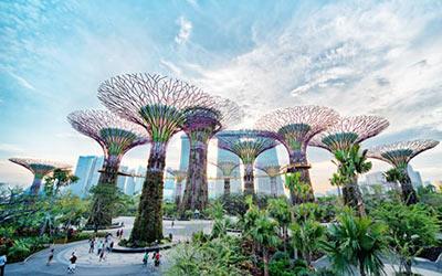 garden-by-the-bay-tour-singapore-tu-ha-noi-4-ngay